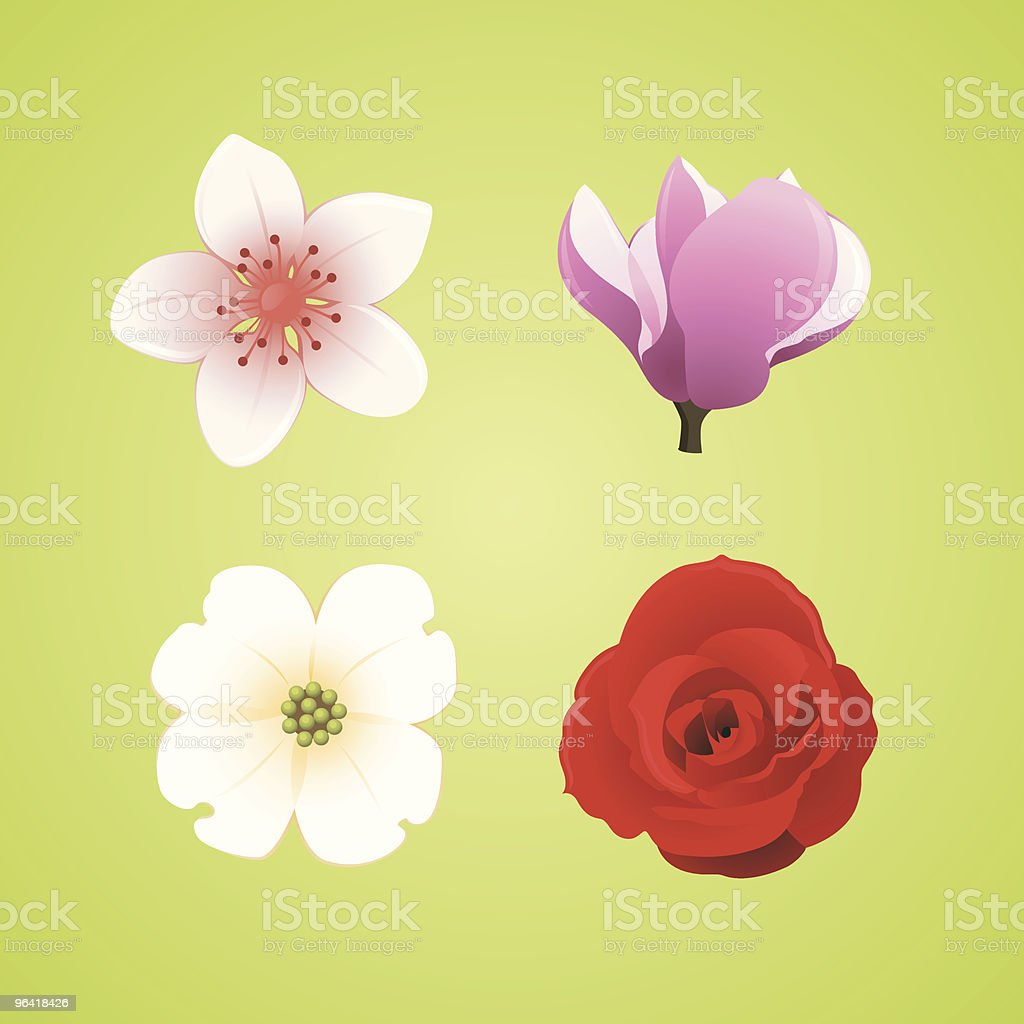 Floral Icons: Cherry Blossom, Magnolia, Dogwood, and Rose vector art illustration