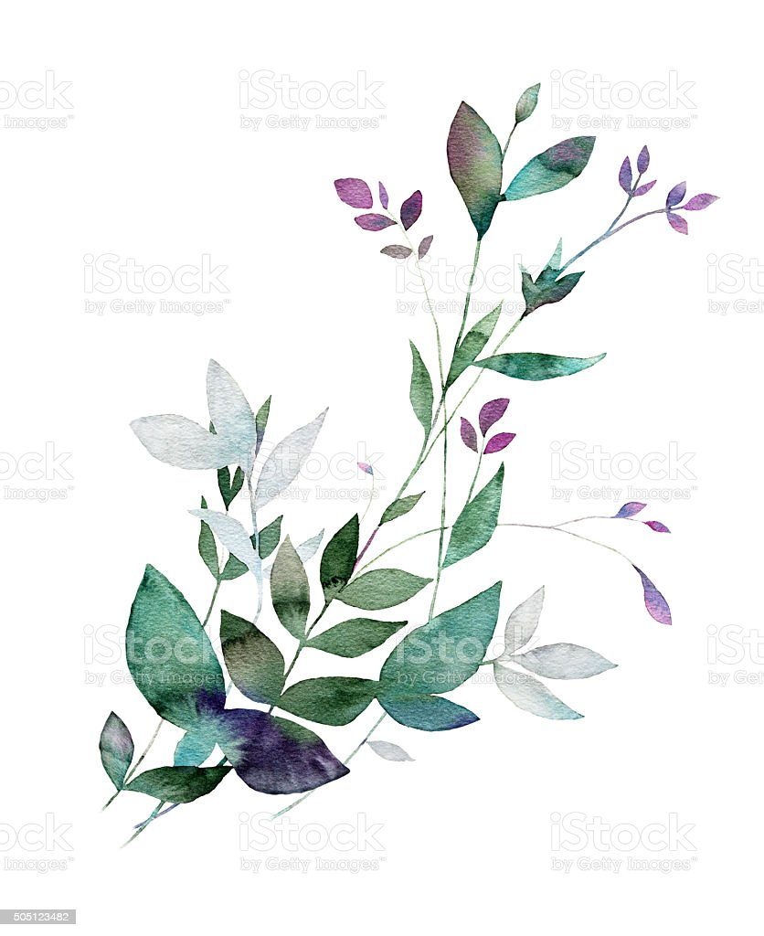Floral watercolor painting. vector art illustration