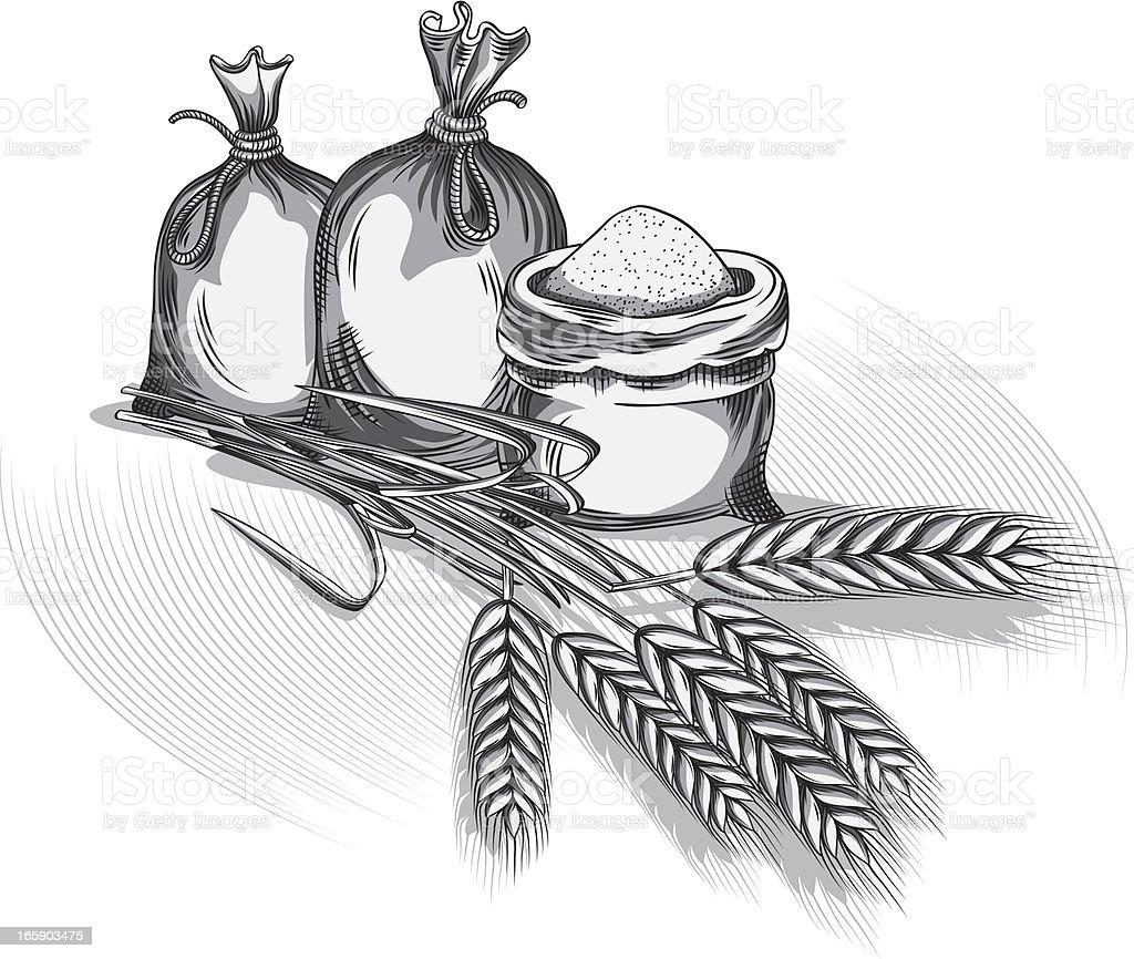 Flour & Wheat vector art illustration