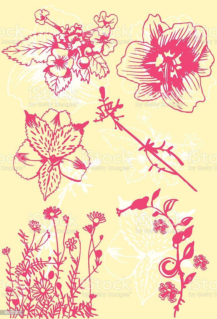 Flower Line Art royalty-free stock vector art