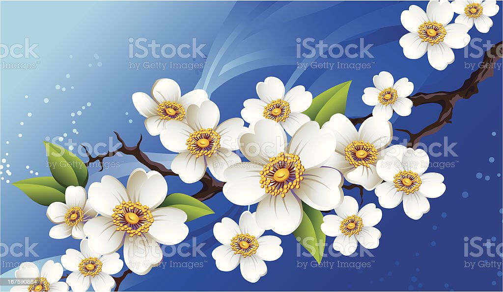 Flowering branch royalty-free stock vector art