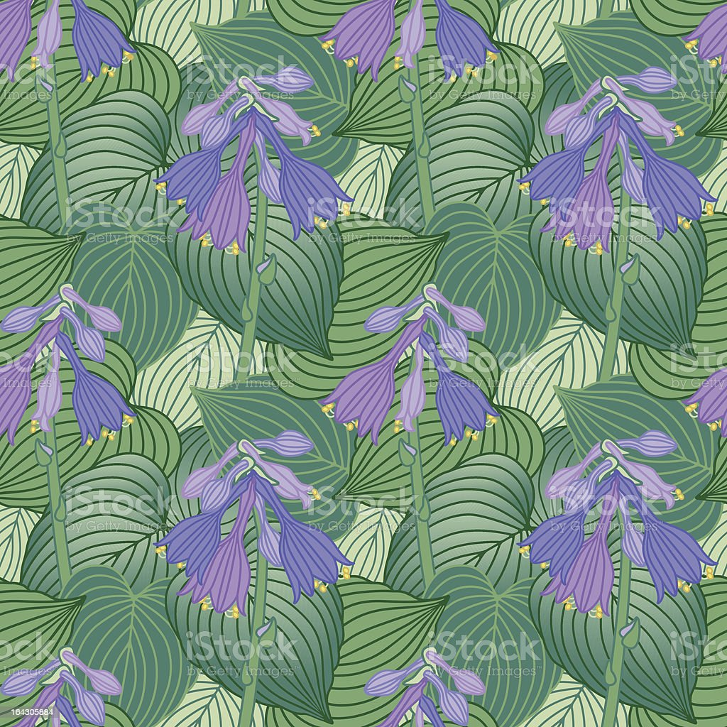 Flowering Hosta Pattern royalty-free stock vector art
