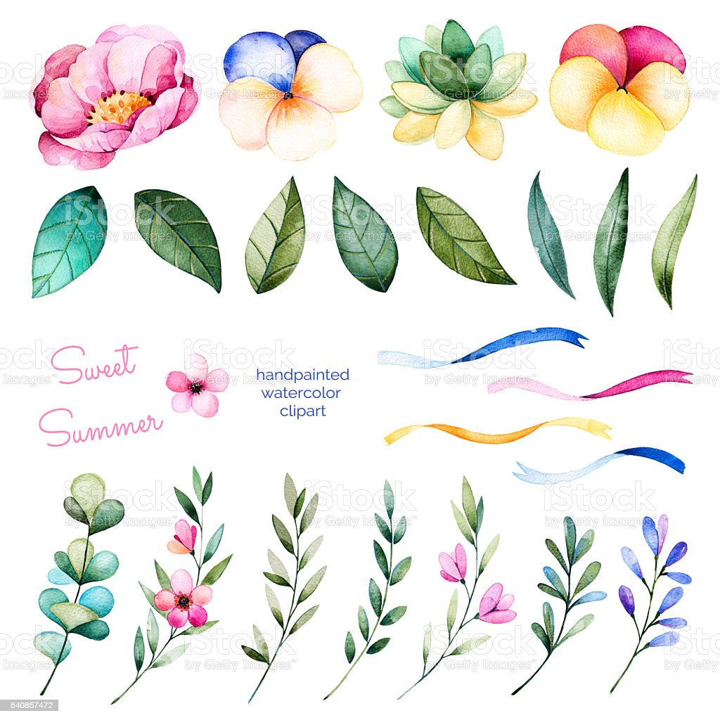 Foral collection with flowers,peony,leaves,branches,succulent plant vector art illustration