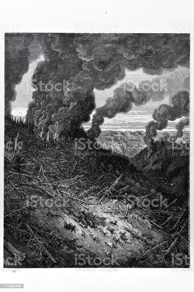 Forest fire royalty-free stock vector art
