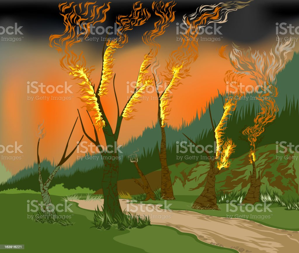 Forest fires royalty-free stock vector art