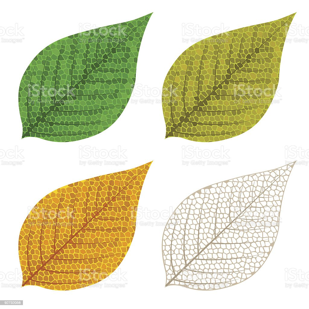 Four autumn mosaic leaves royalty-free stock vector art