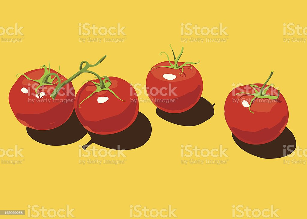 Four Tomatoes vector art illustration