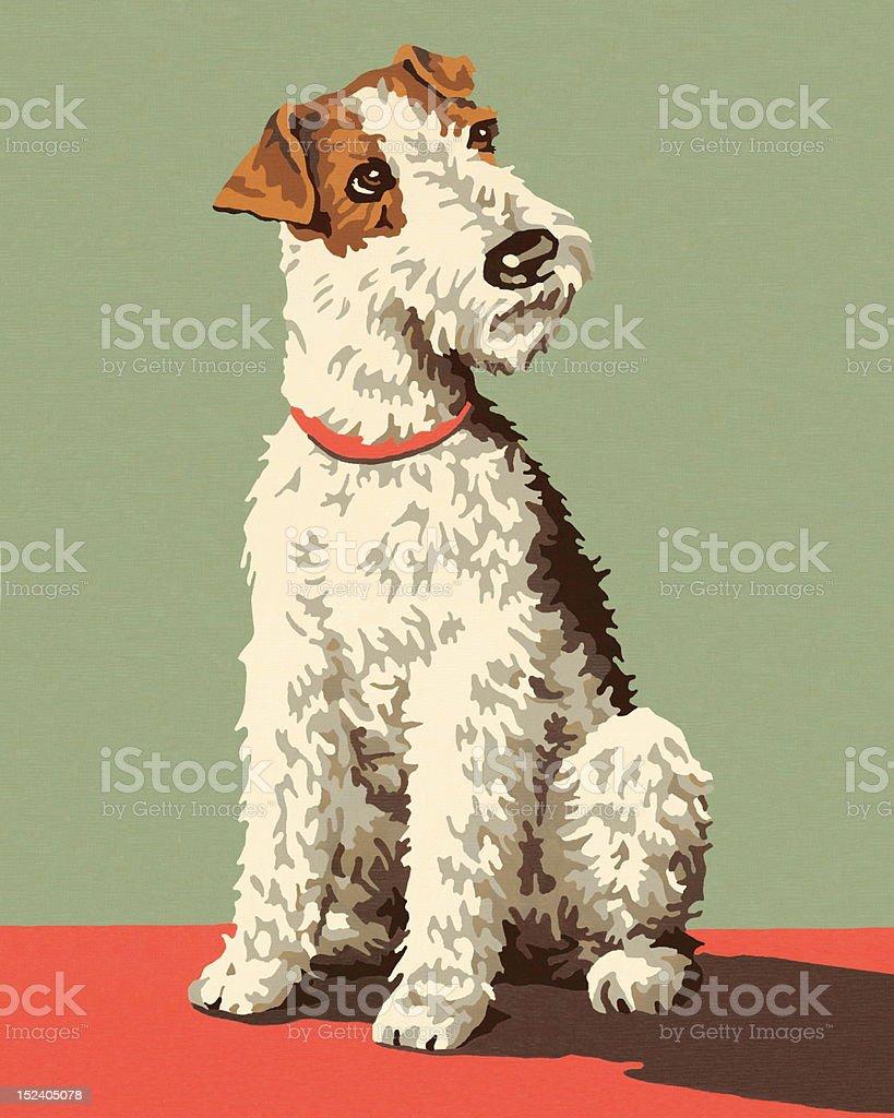 Fox Terrier Dog royalty-free stock vector art