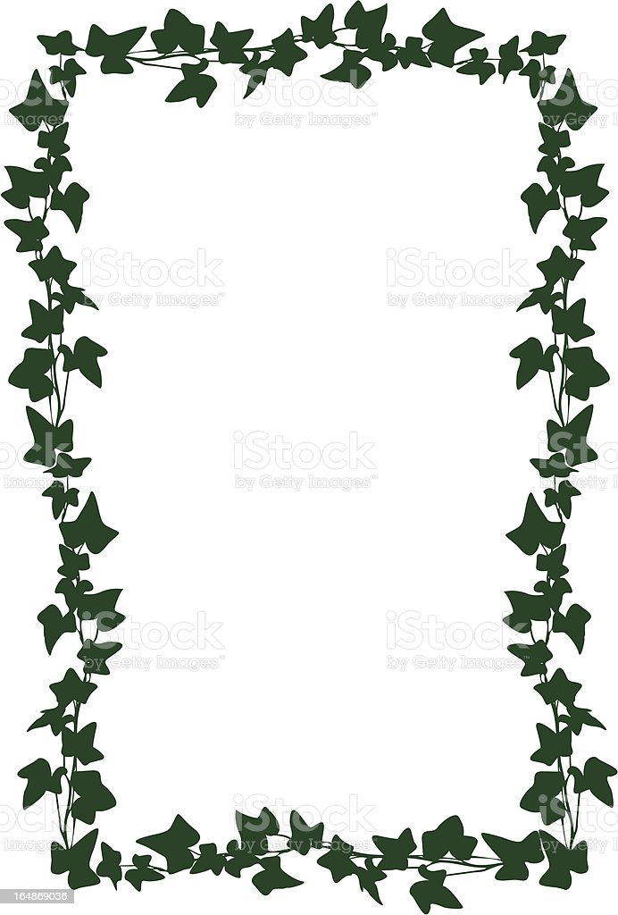 Frame from an ivy, vector royalty-free stock vector art