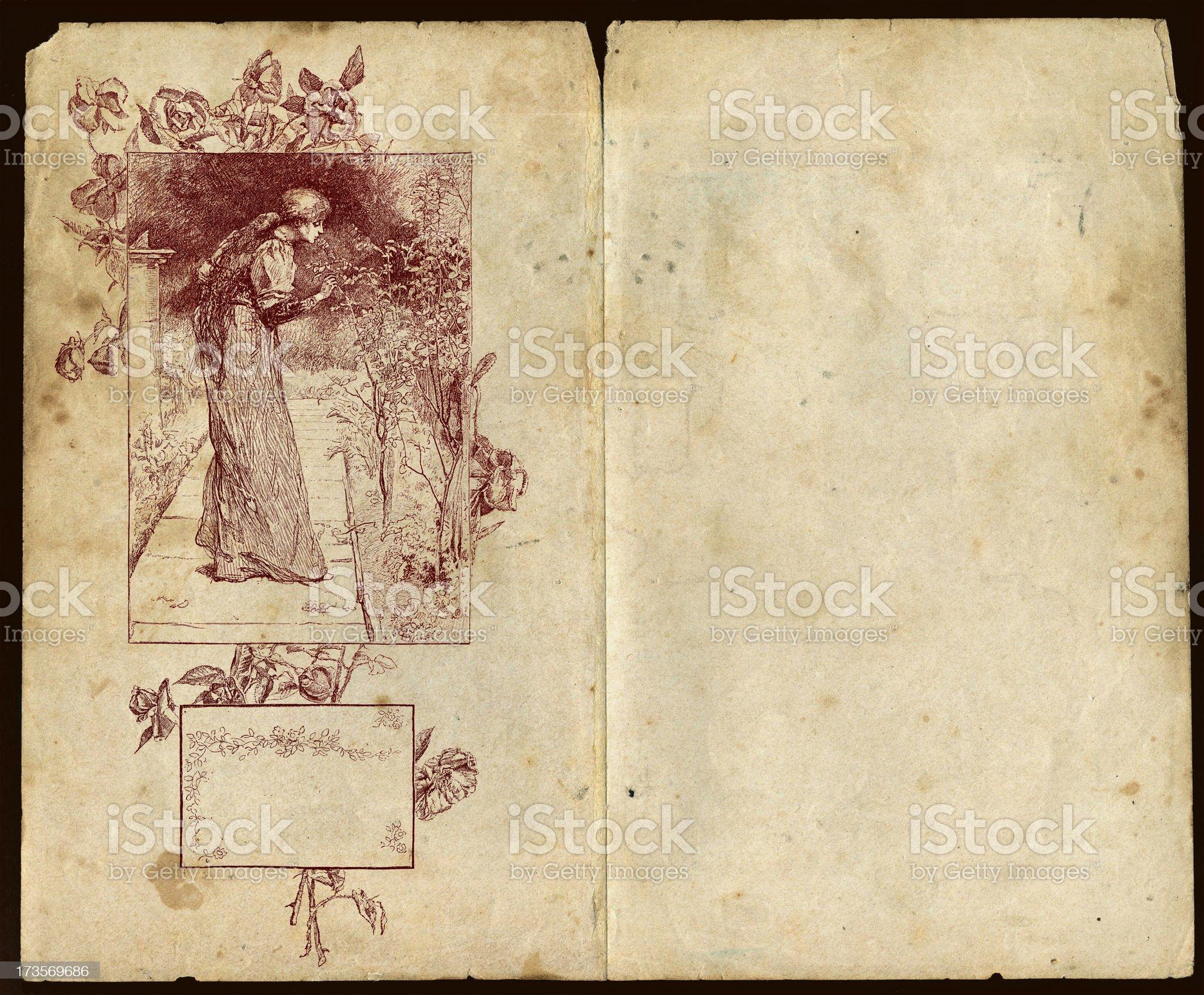 Framed on roses strikes back Pad royalty-free stock vector art