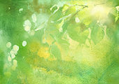 fresh foliage, spring watercolor background