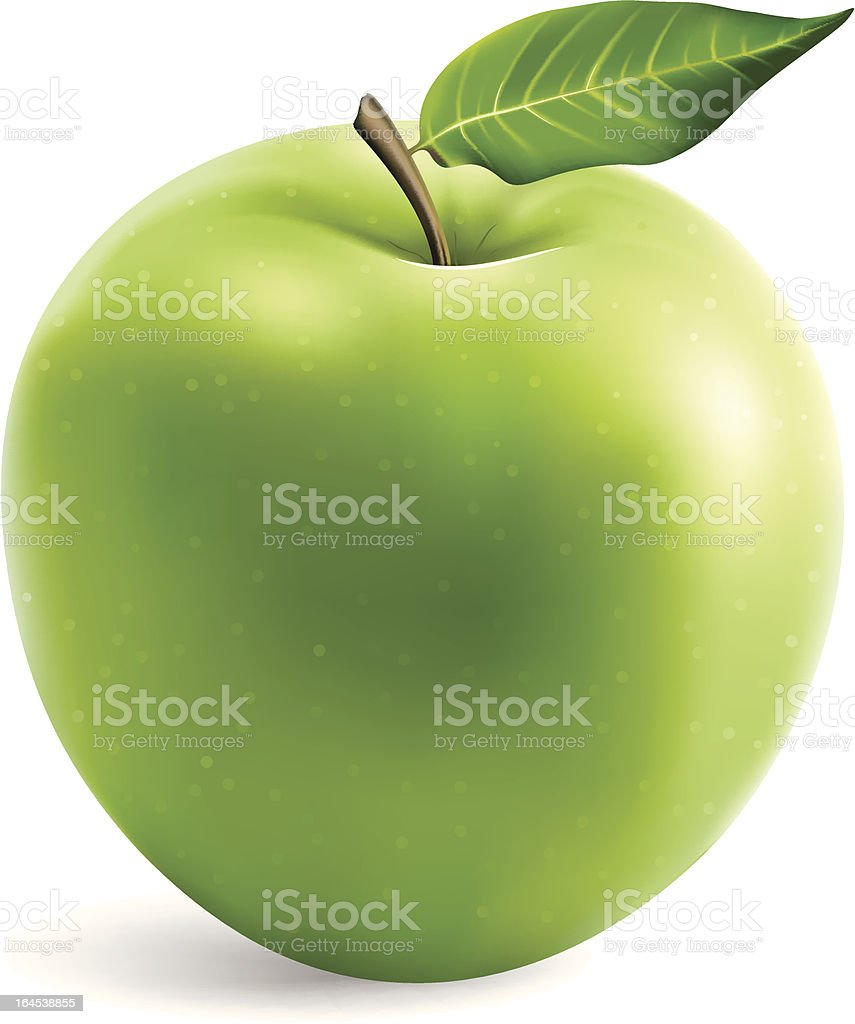 Fresh Granny Smith Apple vector art illustration