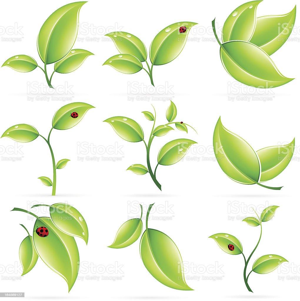 Fresh Green Leaves Icon Set royalty-free stock vector art
