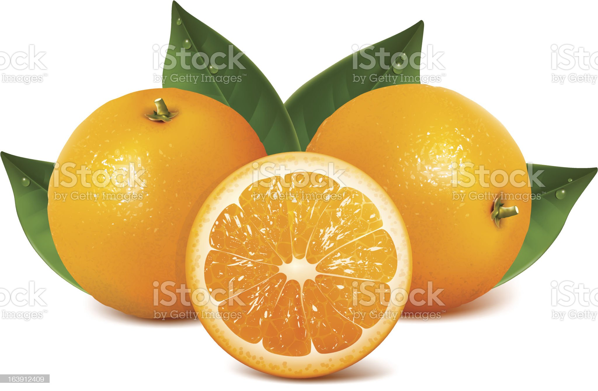 Fresh ripe oranges with leaves. royalty-free stock vector art