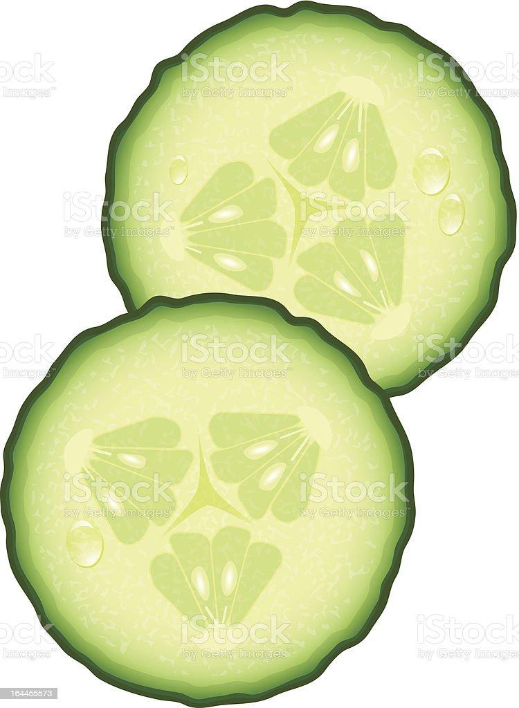 Fresh Slices of Cucumber vector art illustration
