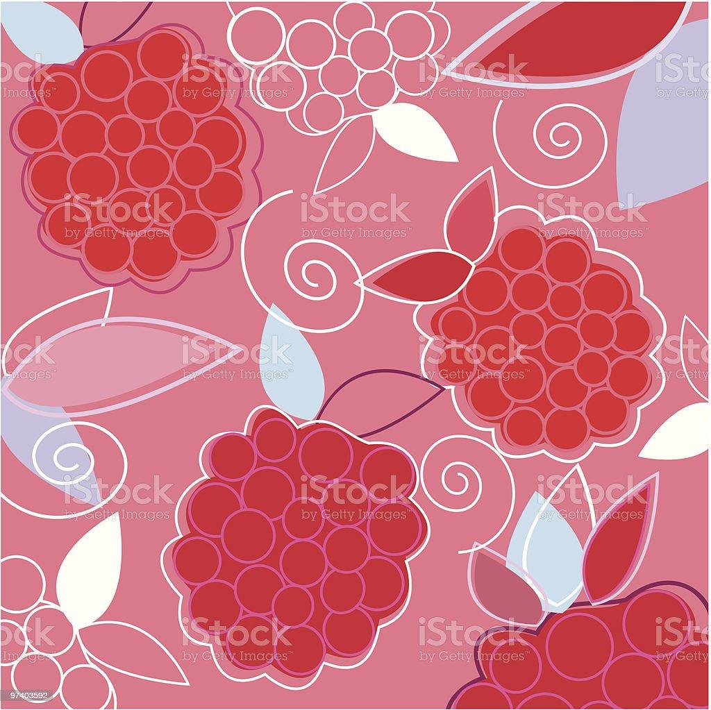 Fresh Taste of Summer Raspberry vector art illustration