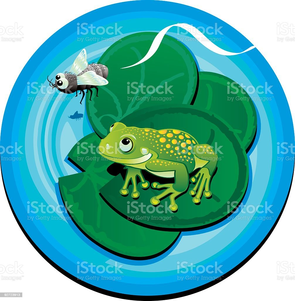 Frog and Fly royalty-free stock vector art