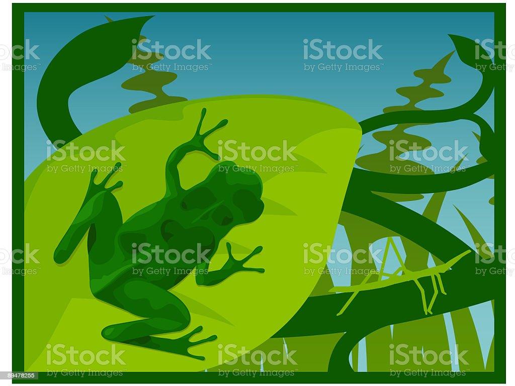 Frog sitting on a leaf vector art illustration