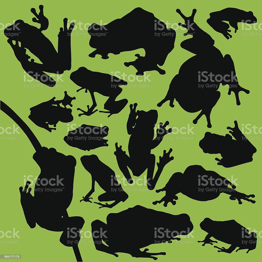Frogs vector art illustration