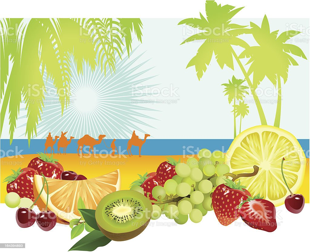 Fruits and summer royalty-free stock vector art