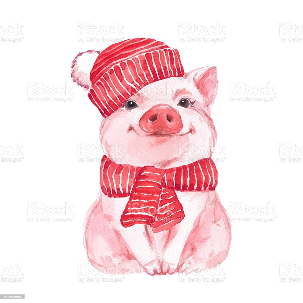 Funny pig in a red hat and scarf vector art illustration