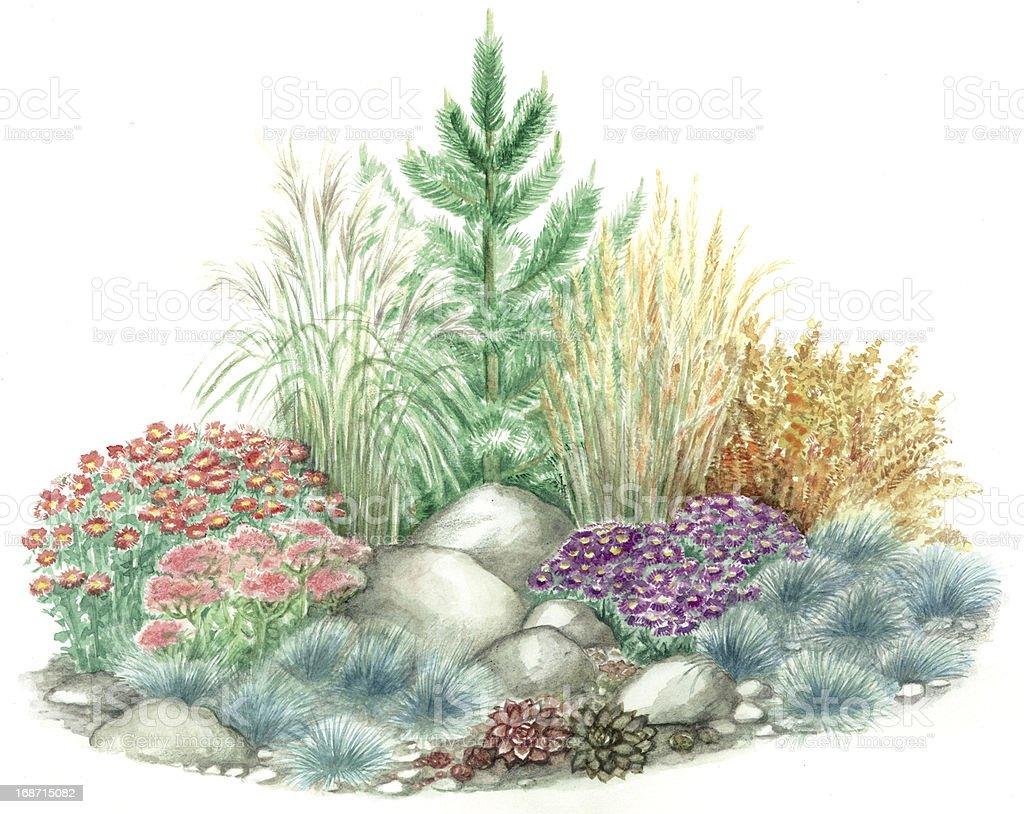 Garden design of rockery vector art illustration