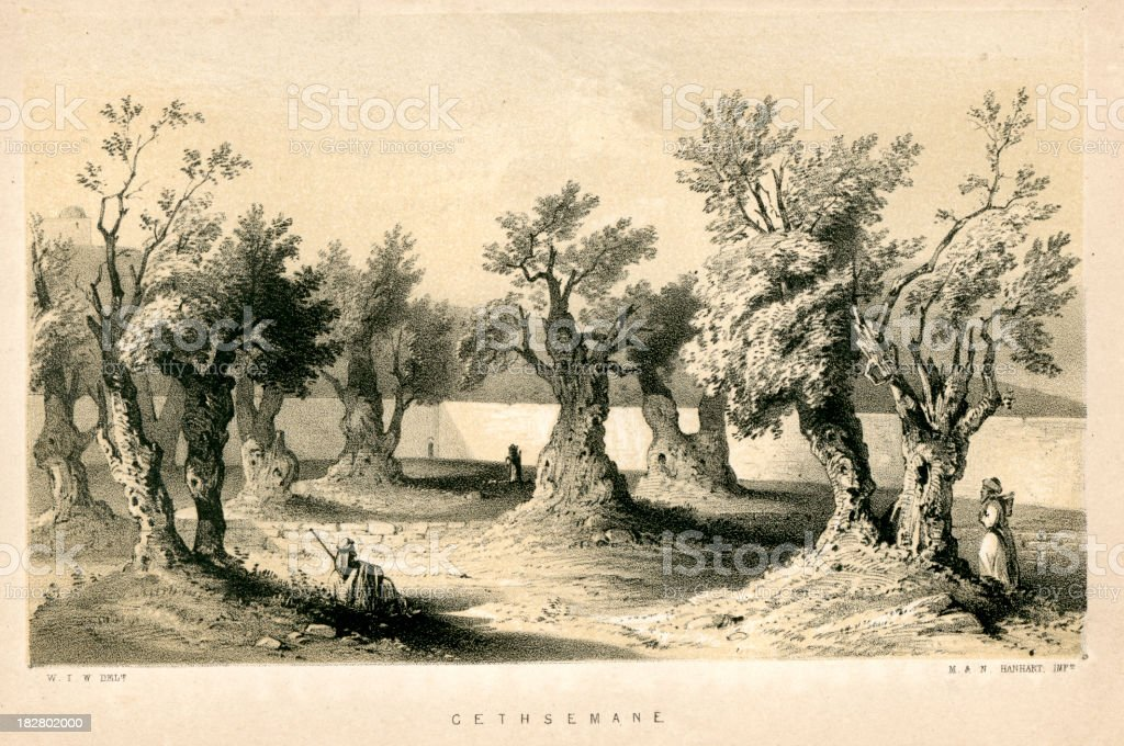 Garden of Gethsemane royalty-free stock vector art