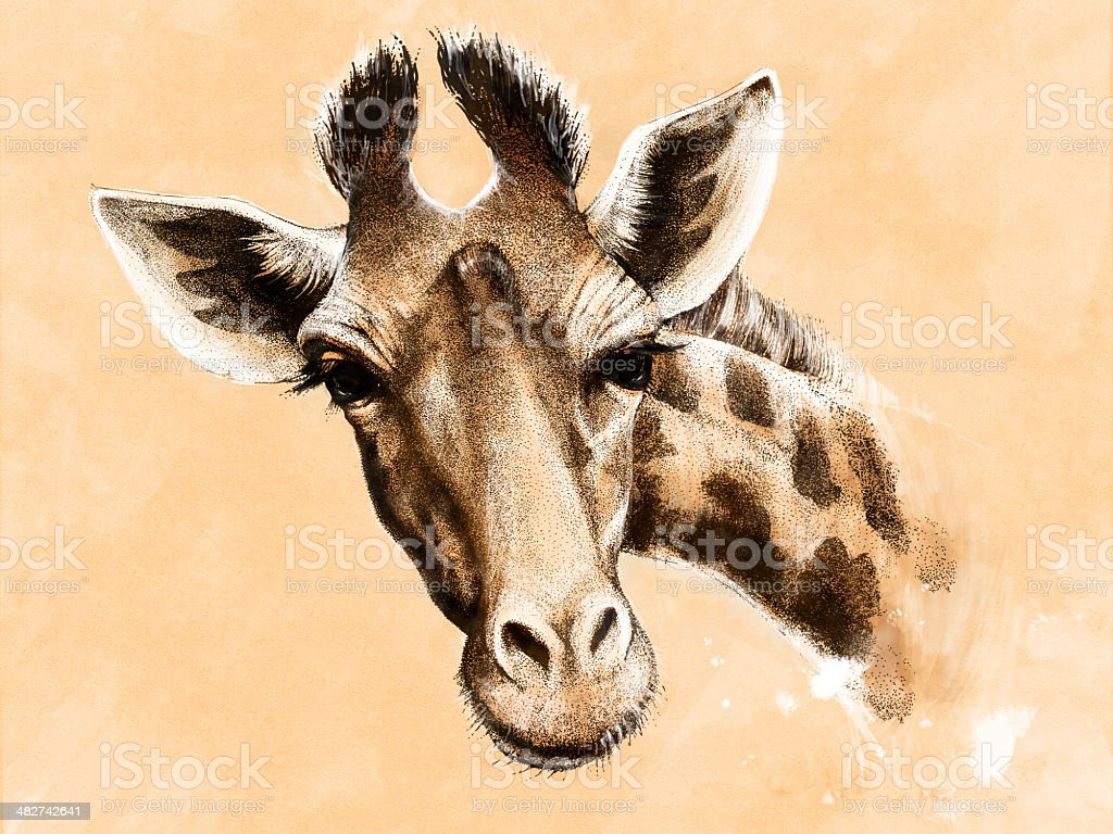 Giraffe drawing Mixed media vector art illustration