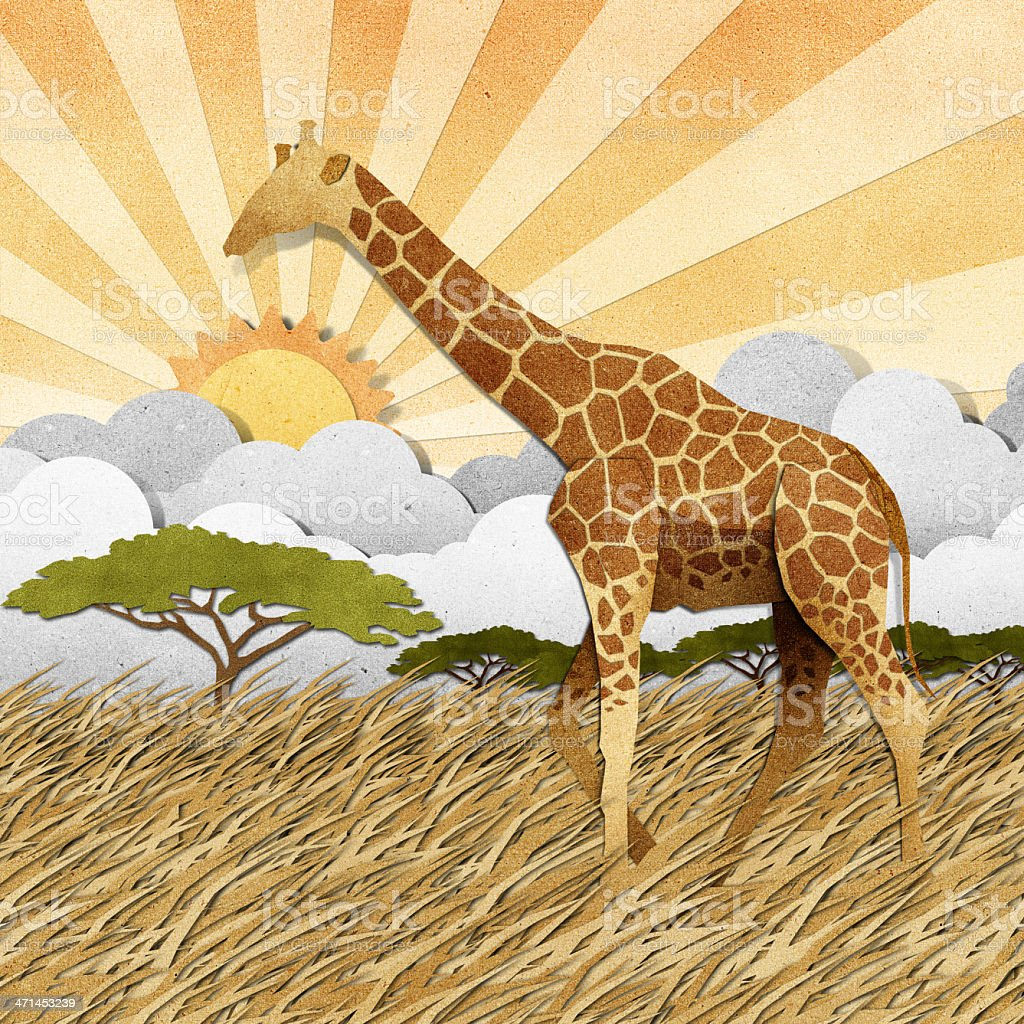 Giraffe  in Safari field recycled paper background royalty-free stock vector art