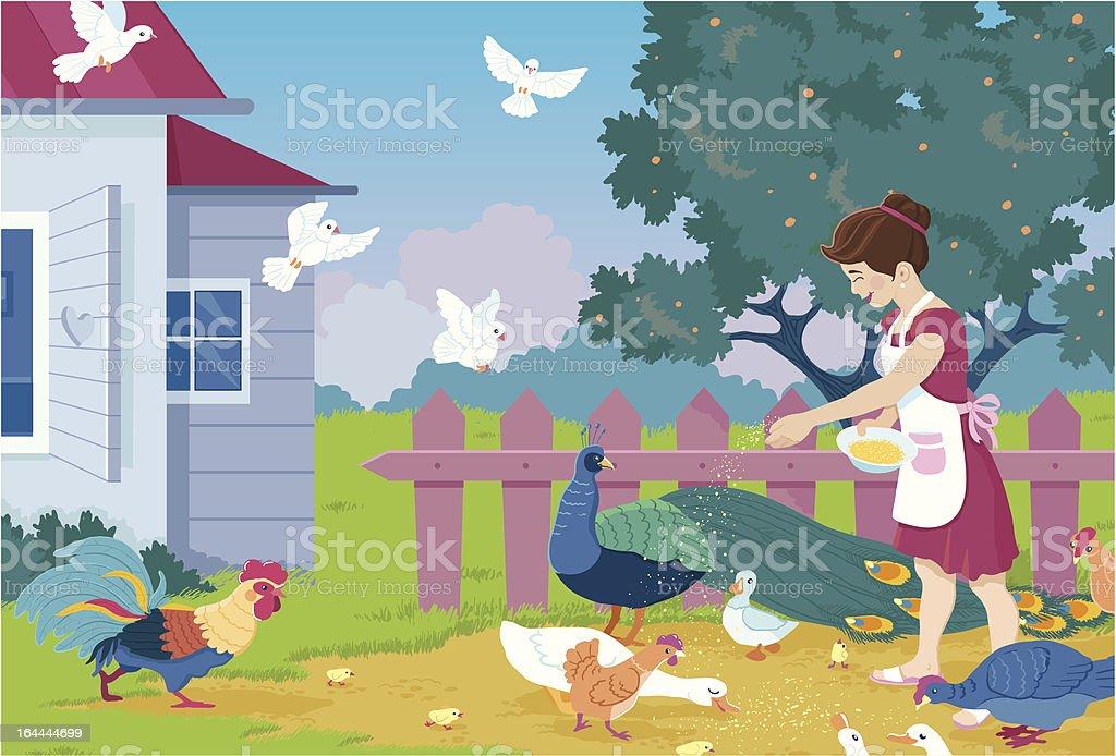 Girl Feeding Farm Birds vector art illustration
