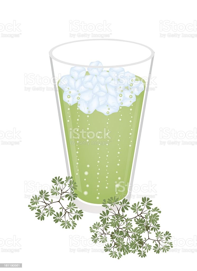 Glass of Green Tea with Ice Cube vector art illustration