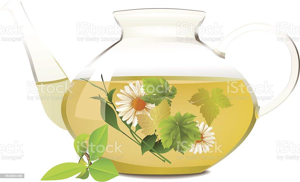 Glass teapot. royalty-free stock vector art