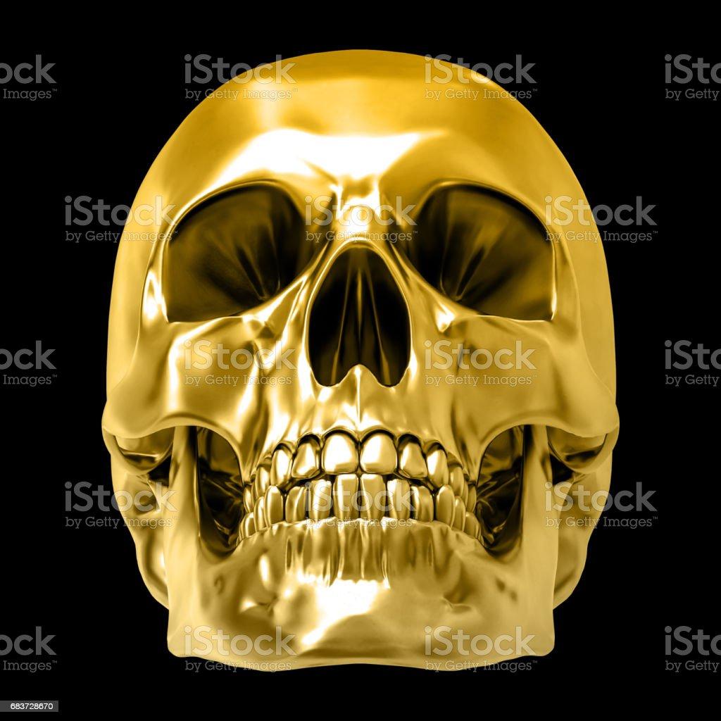Golden human skull, isolated against the black background vector art illustration