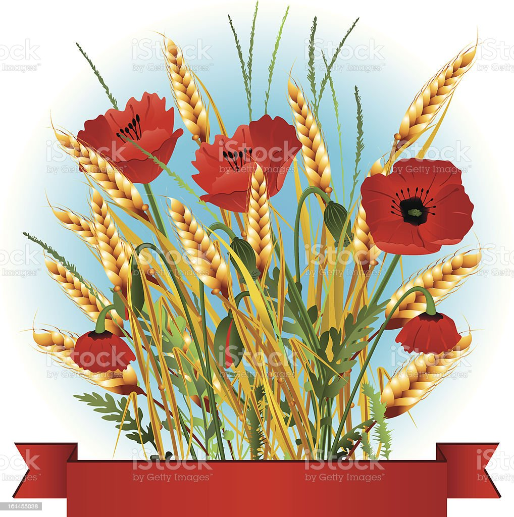 Golden wheat with red poppy in the blue sky background royalty-free stock vector art