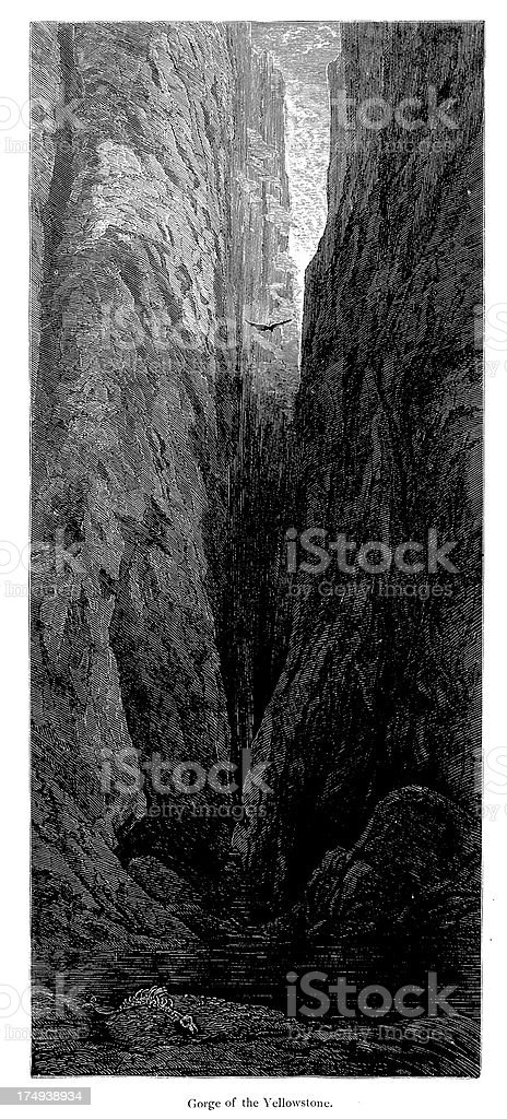 Gorge of the Yellowstone, USA royalty-free stock vector art