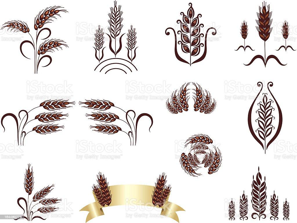 Grain ears. Design elements. royalty-free stock vector art