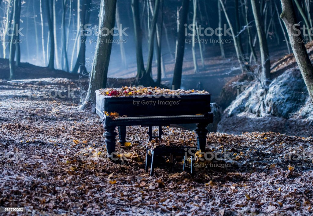 Grand piano in the woods stock photo