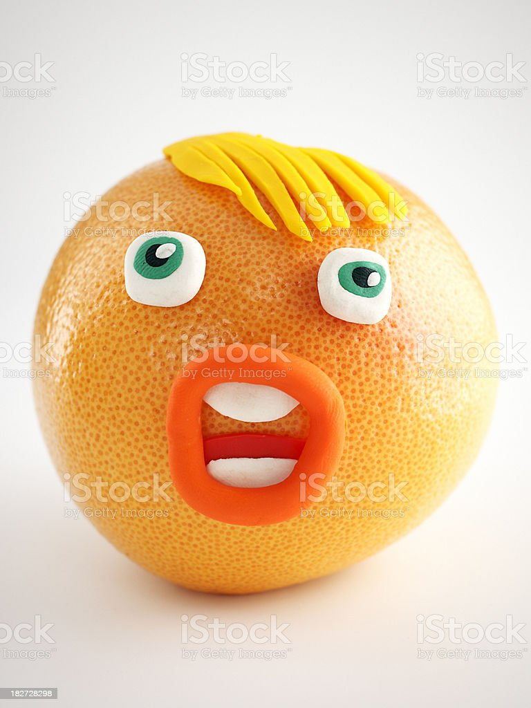 Grapefruit Portrait vector art illustration