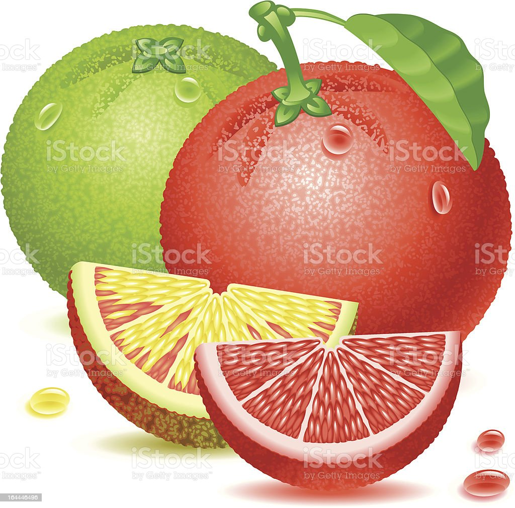grapefruits royalty-free stock vector art