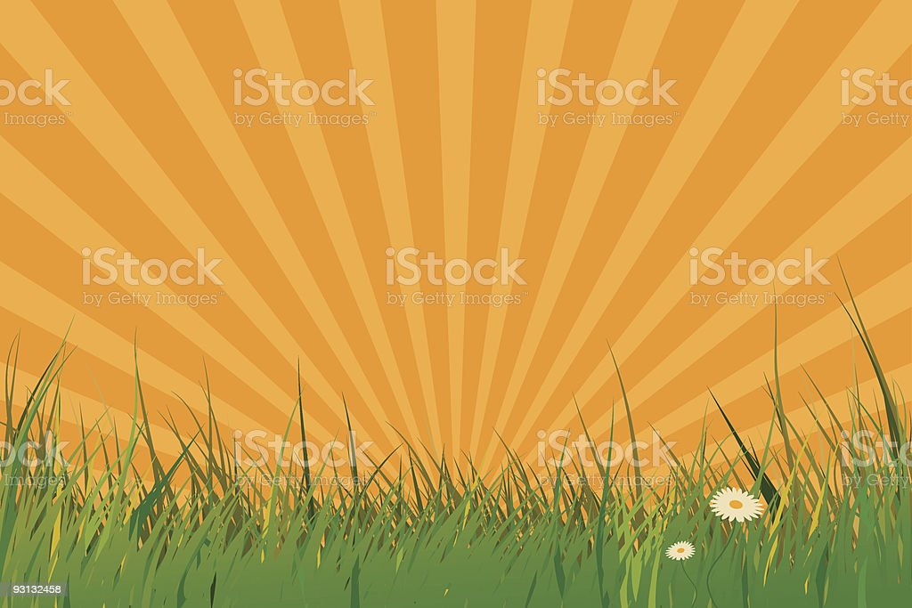 Grass field against rising sun royalty-free stock vector art
