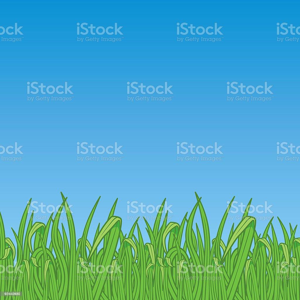 Grass (vector & jpg) royalty-free stock vector art