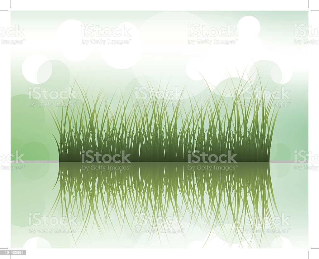 grass on water royalty-free stock vector art