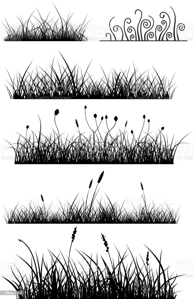 Grass pack royalty-free stock vector art