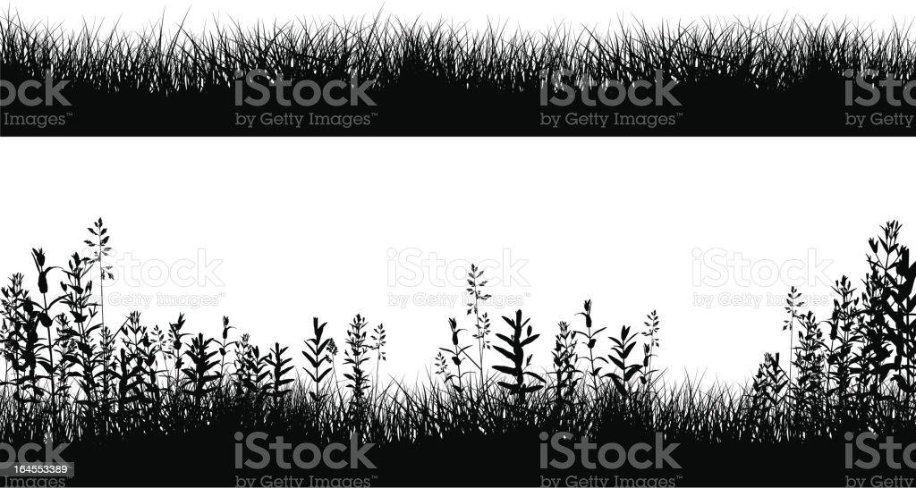 Grassy Field Border Silhouettes royalty-free stock vector art
