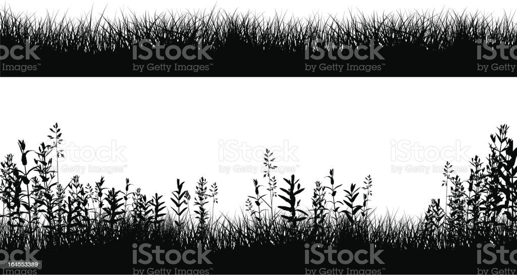 Grassy Field Border Silhouettes vector art illustration
