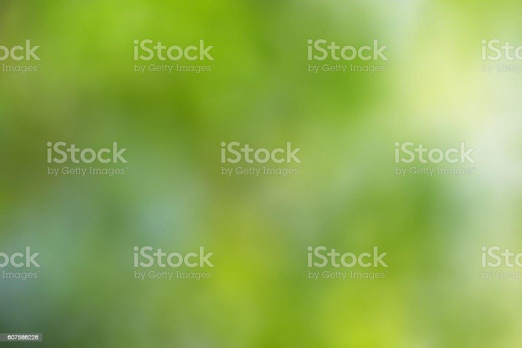 green and light green blur background vector art illustration