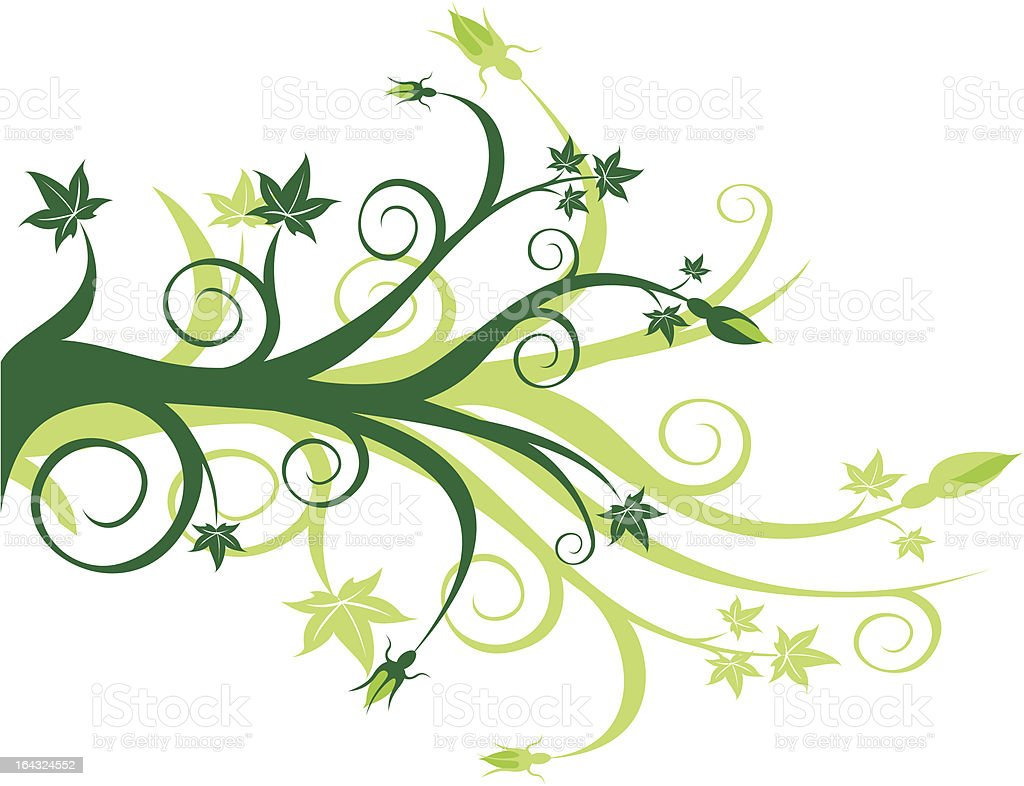 Green Floral Scroll with leaves and flower buds royalty-free stock vector art