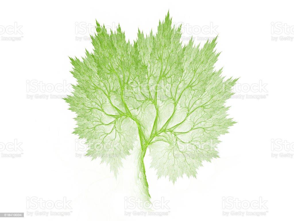 Green fractal tree vector art illustration
