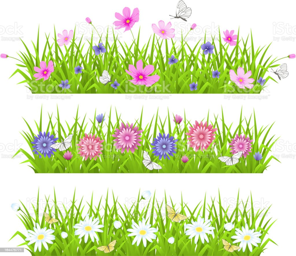 Green grass and flowers royalty-free stock vector art