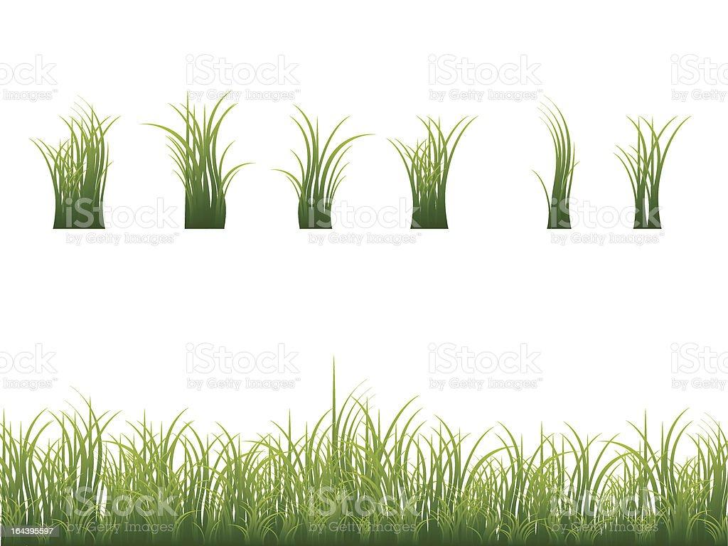 Green grass collection vector art illustration